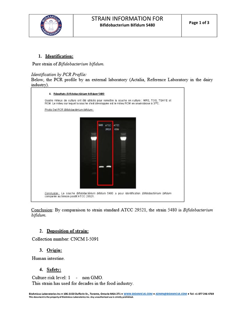 Bifidobacterium Bifidum 5480