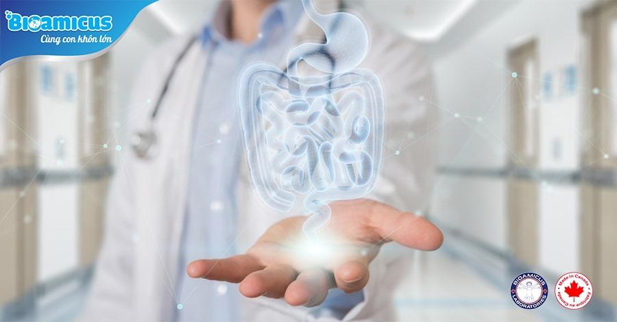 Chuyên khảo 10 chủng lợi khuẩn